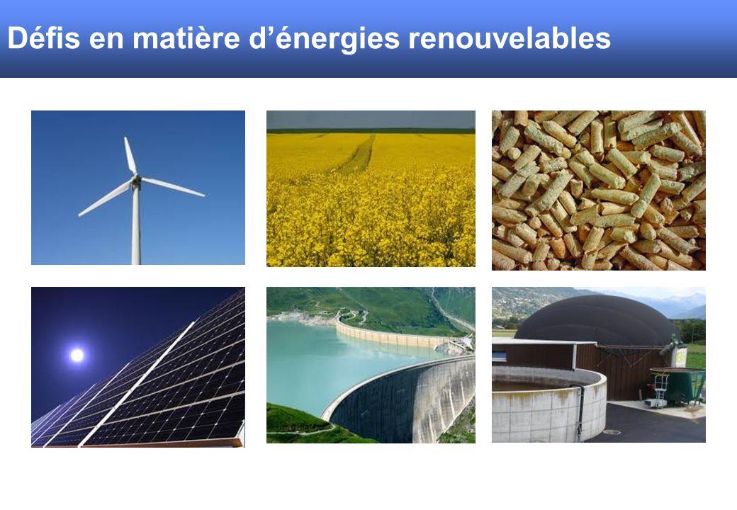 SBV/USP Défis en matière dénergies renouvelables
