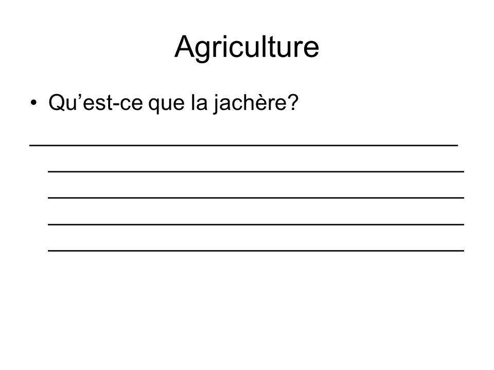 Agriculture Quest-ce que la jachère? ___________________________________ __________________________________ __________________________________ _______