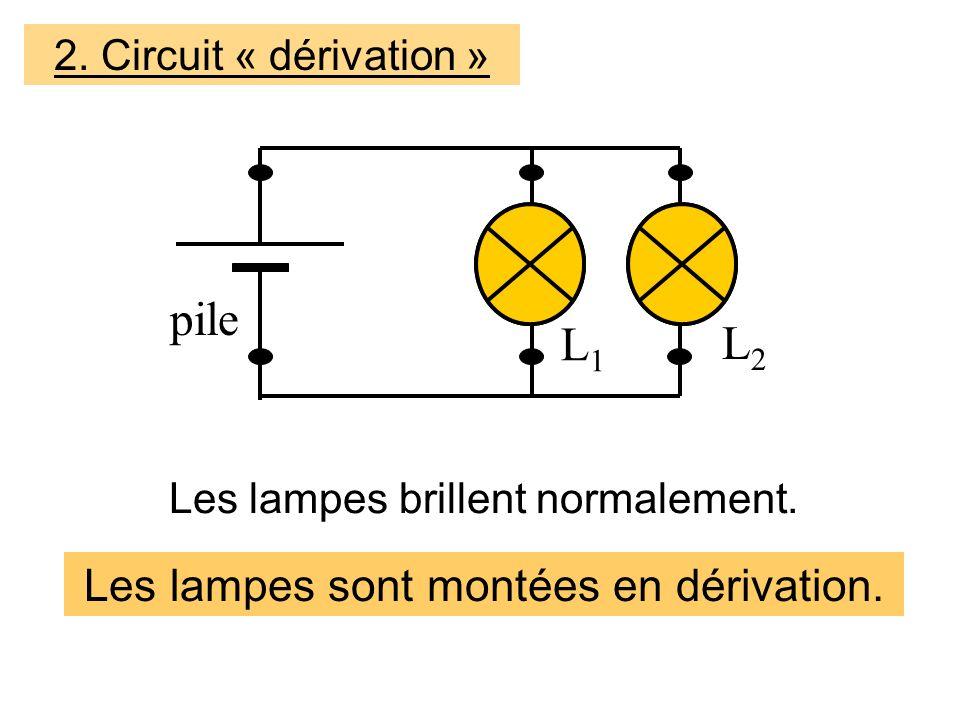L1L1 L2L2 Les lampes sont montées en dérivation.Les lampes brillent normalement.