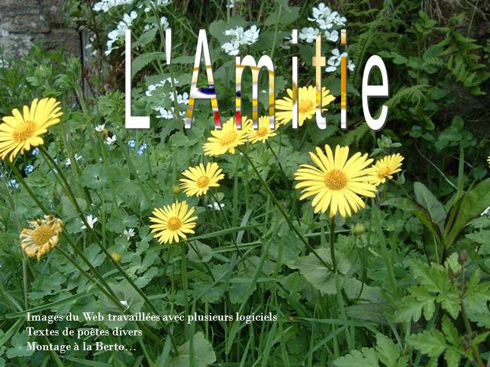 LAmitié pure, lAmitié vraie Qui emplit les jours de nos vies Qui lève de bonheur nos coeurs.....