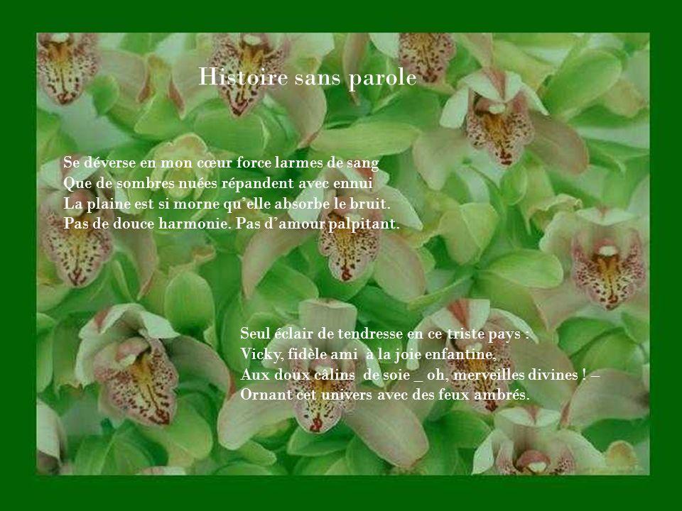 Entre Paris, Bourges, Nançay, Fidèle aux promesses denfance, Il reprend le fil du passé, Dans lémoi de ladolescence.
