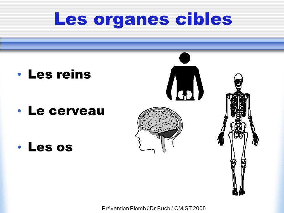 Prévention Plomb / Dr Buch / CMIST 2005 Les organes cibles Les reins Le cerveau Les os