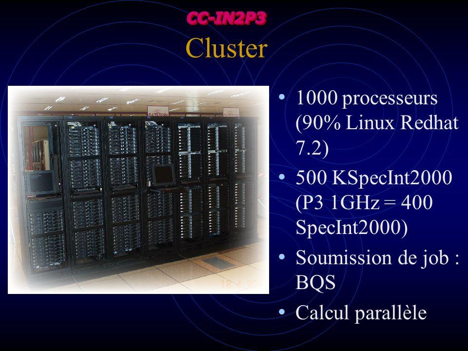 Cluster 1000 processeurs (90% Linux Redhat 7.2) 500 KSpecInt2000 (P3 1GHz = 400 SpecInt2000) Soumission de job : BQS Calcul parallèle