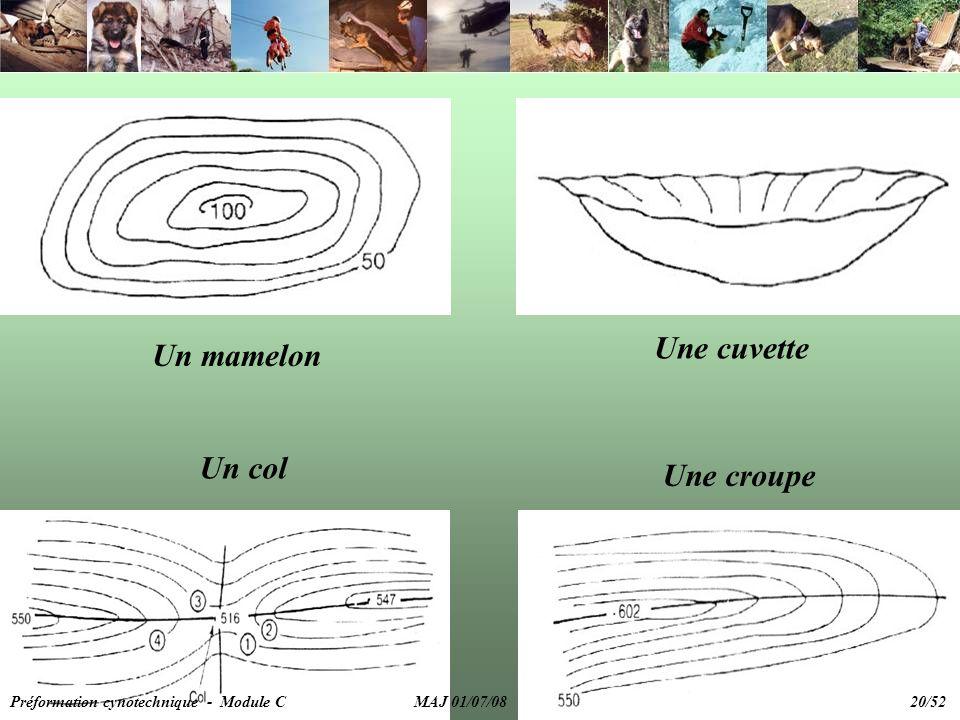 Un mamelon Une cuvette Un col Une croupe Préformation cynotechnique - Module C MAJ 01/07/08 20/52