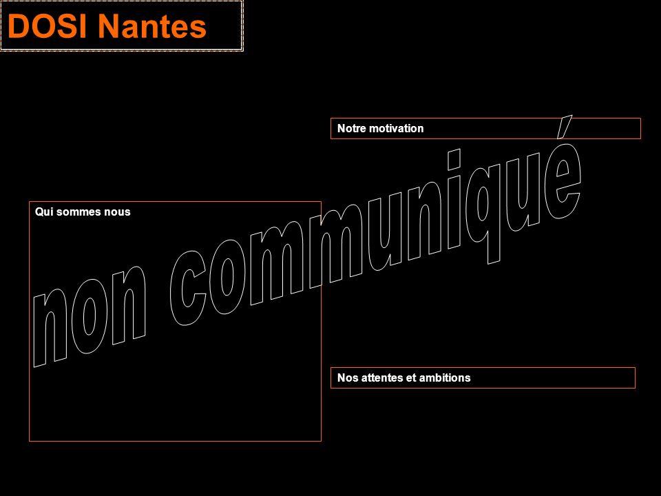 DOSI Nantes Qui sommes nous Notre motivation Nos attentes et ambitions