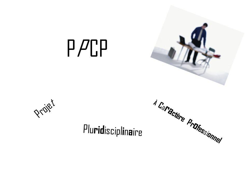 PP CP P r o j e t P l u r i d i s c i p l i n a i r e À C a r a c t è r e P r o f e s s i o n n e l