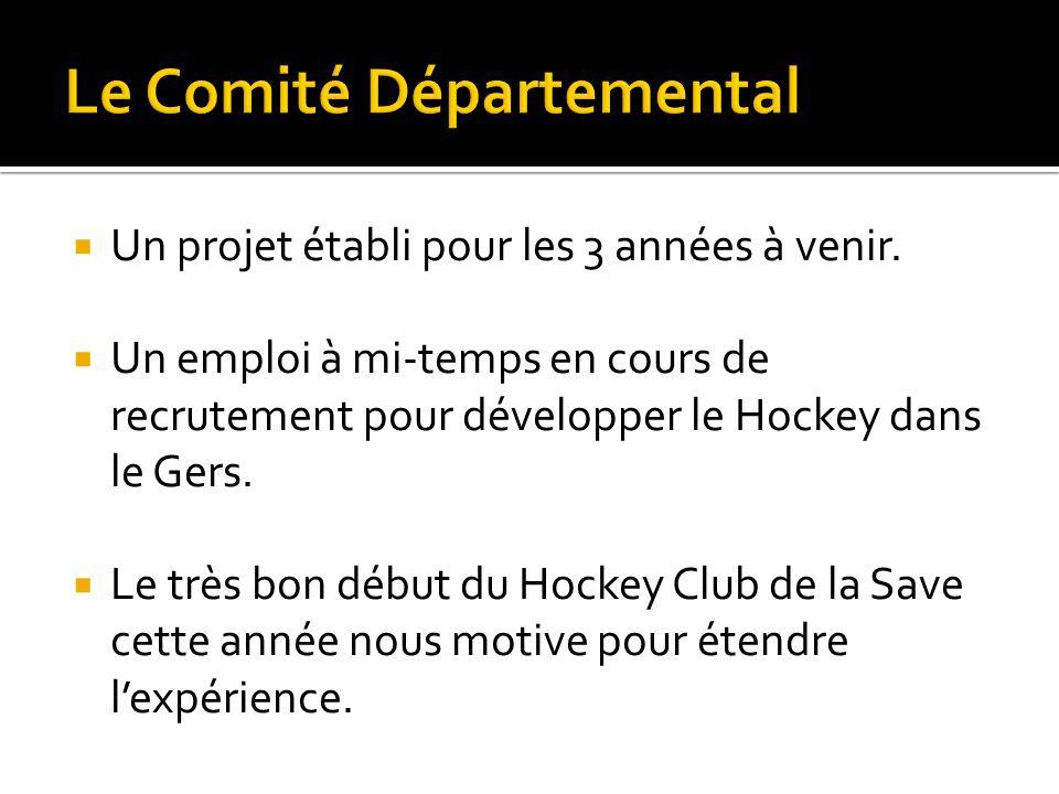 Un projet établi pour les 3 années à venir. Un emploi à mi-temps en cours de recrutement pour développer le Hockey dans le Gers. Le très bon début du