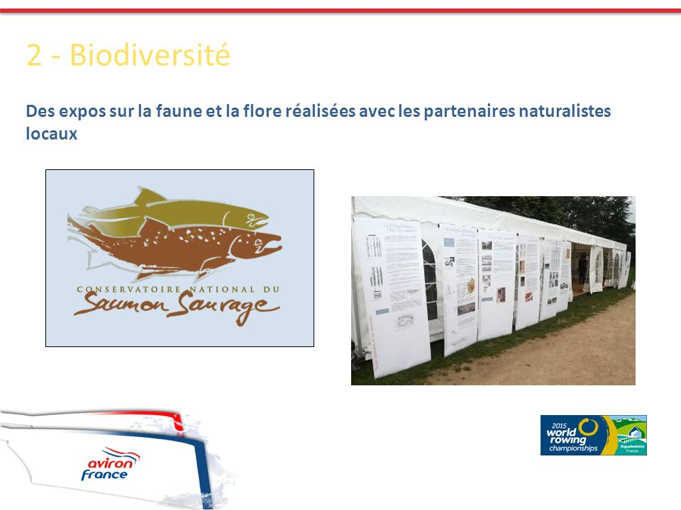 2 - Biodiversité Des expos sur la faune et la flore réalisées avec les partenaires naturalistes locaux