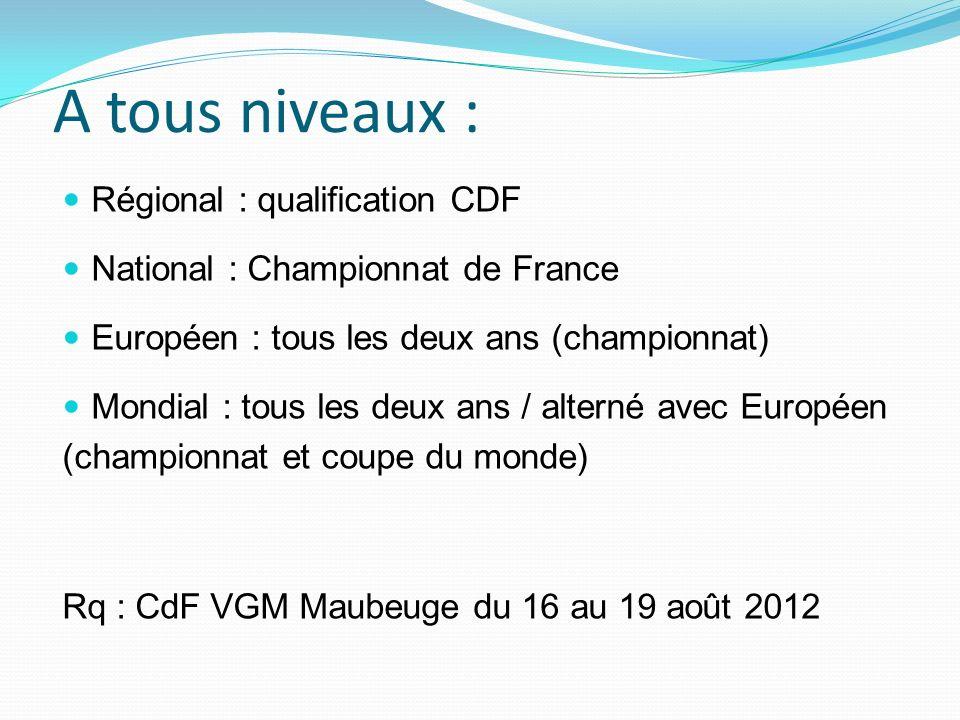 Les français ne sont pas mauvais : F3A 2011 : champion du monde individuel, 3 ème par équipe Christophe PAYSANT LE ROUX (CPLR) - 23 titres de champion de France - 7 titres de champion dEurope - 6 titres de champion du monde