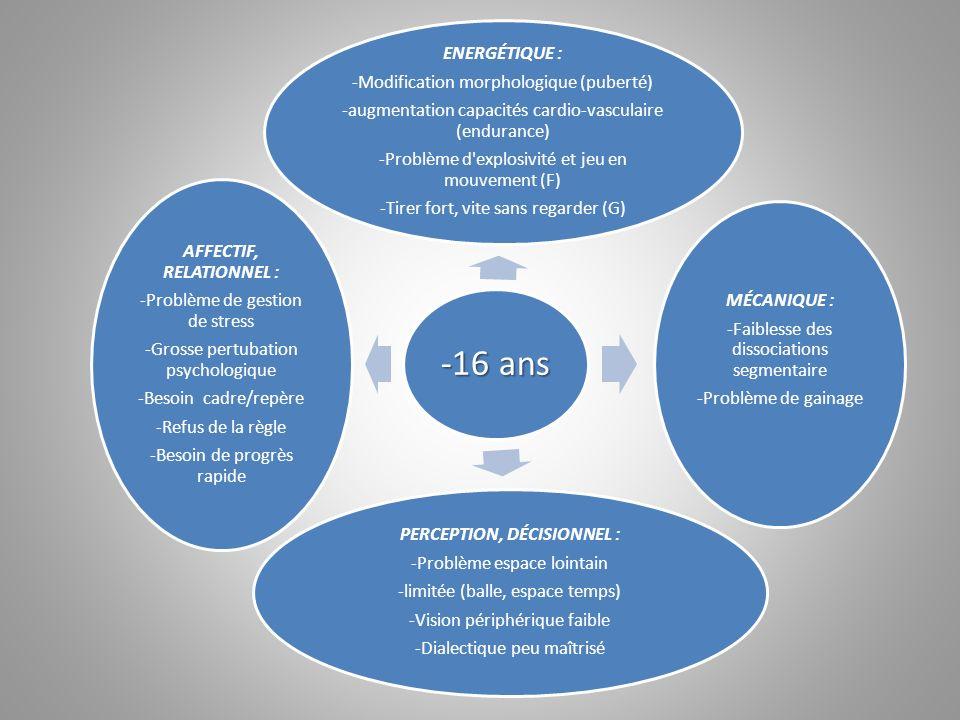 -16 ans ENERGÉTIQUE : -Modification morphologique (puberté) -augmentation capacités cardio-vasculaire (endurance) -Problème d'explosivité et jeu en mo