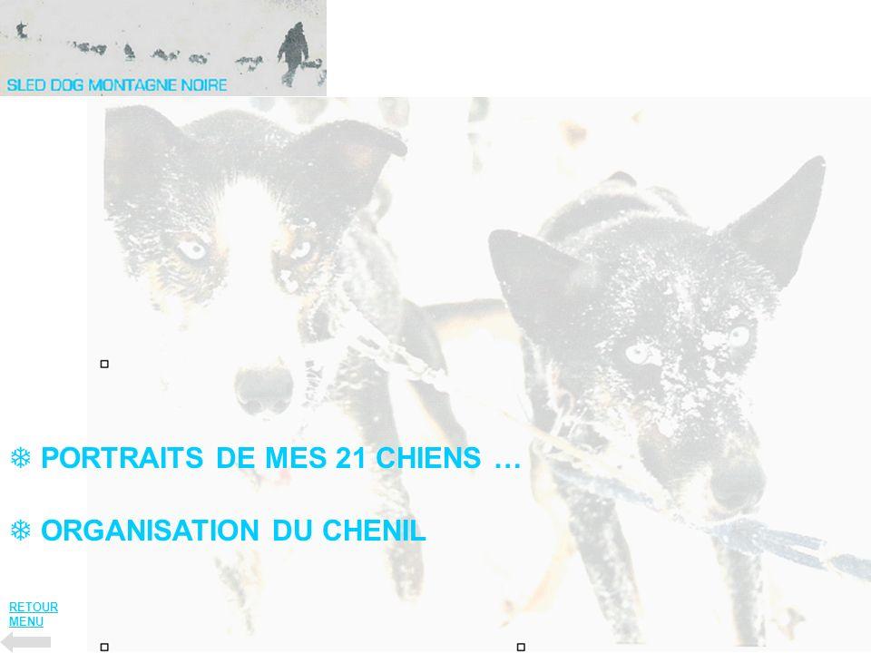 ORGANISATION DU CHENIL PORTRAITS DE MES 21 CHIENS … RETOUR MENU