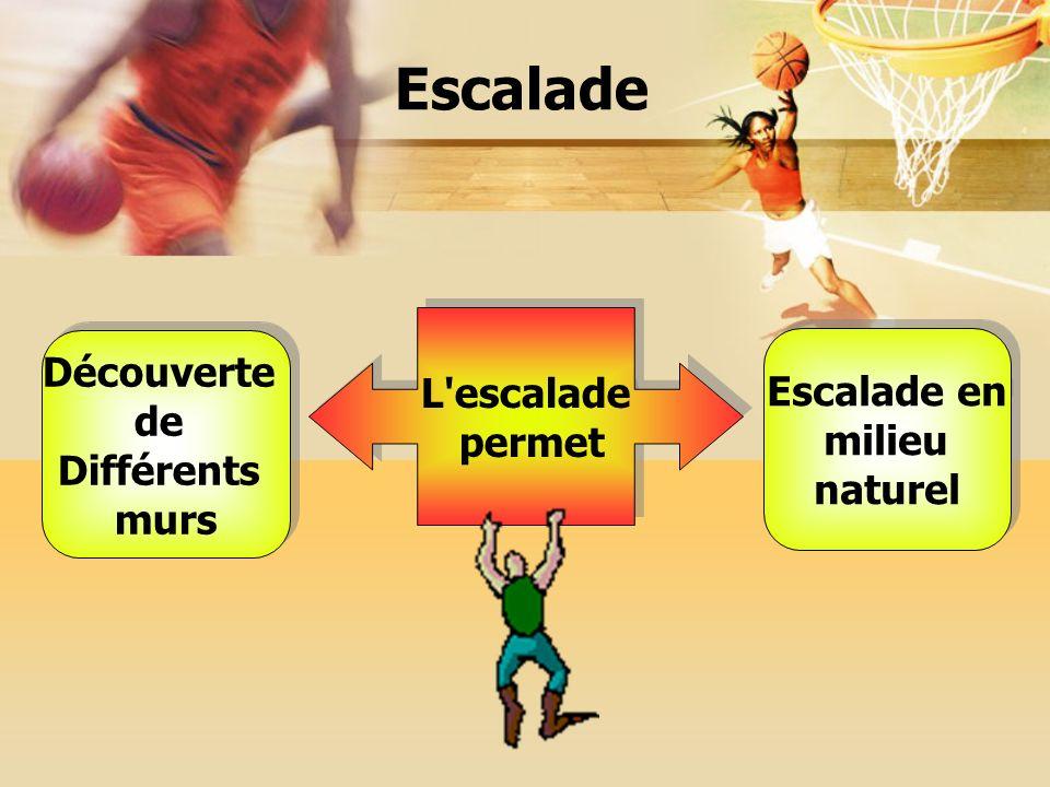 L escalade permet L escalade permet Découverte de Différents murs Découverte de Différents murs Escalade en milieu naturel Escalade en milieu naturel Escalade