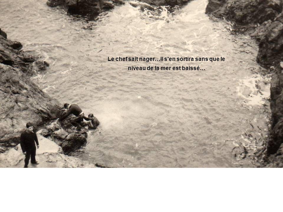 Le chef sait nager…Il s en sortira sans que le niveau de la mer est baissé…