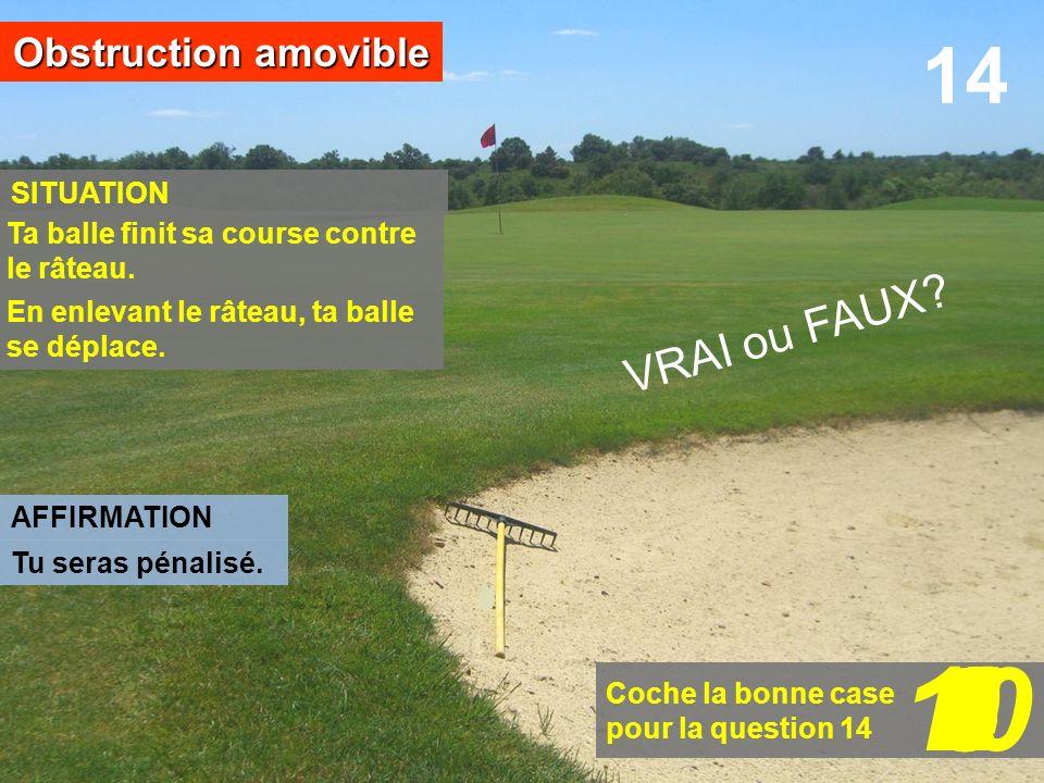 Coche la bonne case pour la question 14 14 SITUATION Obstruction amovible AFFIRMATION 109876543210 En enlevant le râteau, ta balle se déplace. VRAI ou
