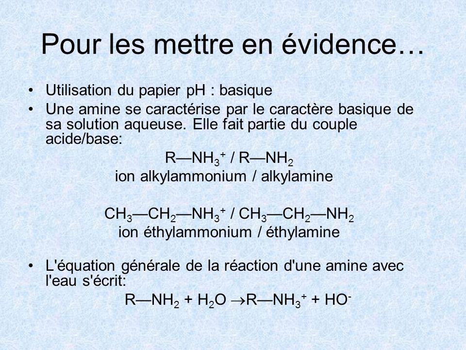 Pour les mettre en évidence… Utilisation du papier pH : basique Une amine se caractérise par le caractère basique de sa solution aqueuse.