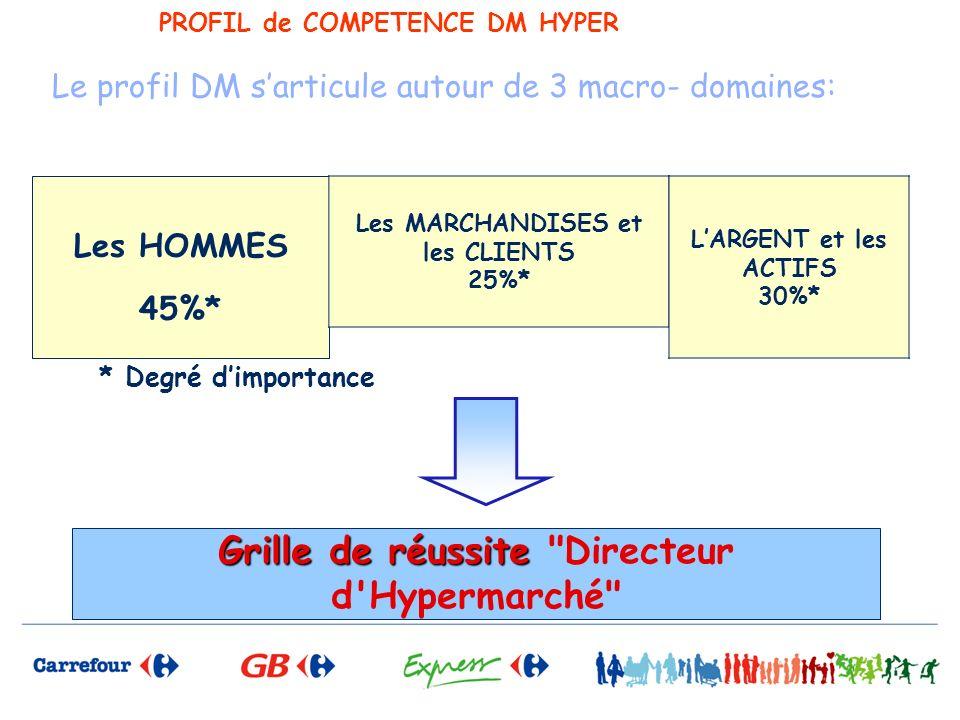 PROFIL de COMPETENCE DM HYPER Le profil DM sarticule autour de 3 macro- domaines: Grille de réussite Grille de réussite