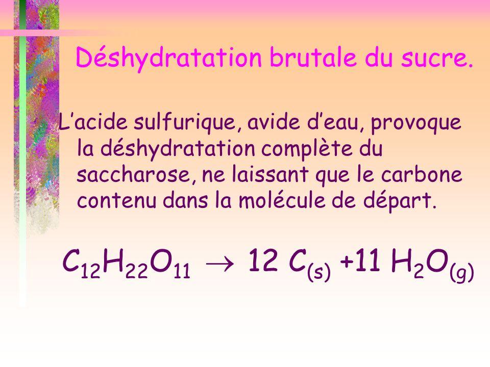 Déshydratation brutale du sucre. Lacide sulfurique, avide deau, provoque la déshydratation complète du saccharose, ne laissant que le carbone contenu