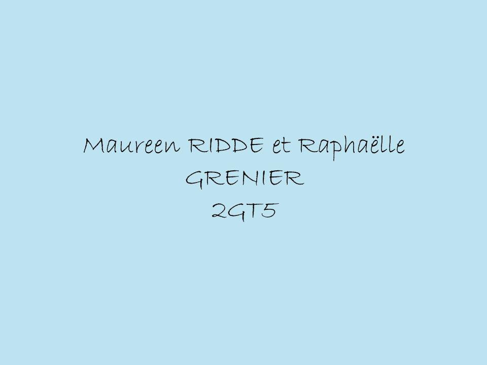 Maureen RIDDE et Raphaëlle GRENIER 2GT5