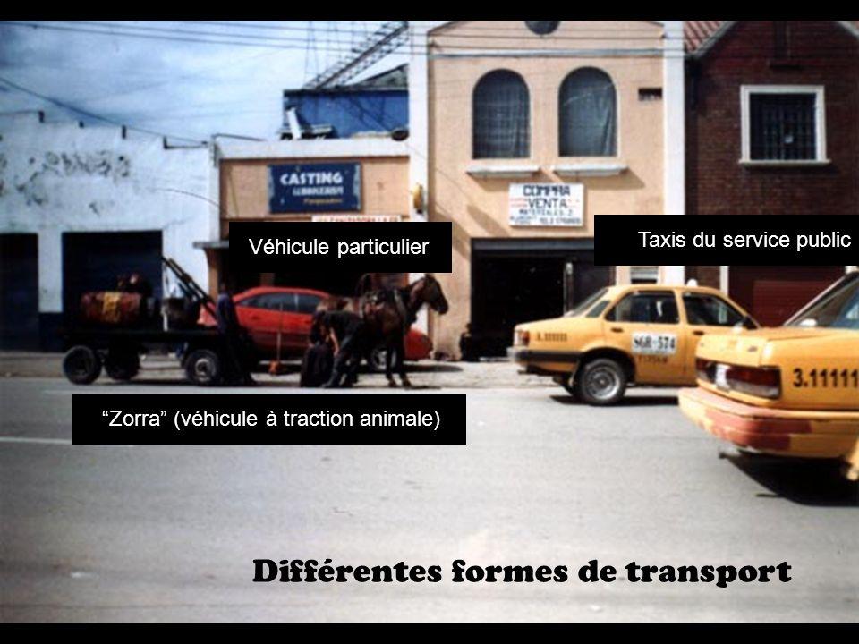 Différentes formes de transport Taxis du service public Véhicule particulier Zorra (véhicule à traction animale)
