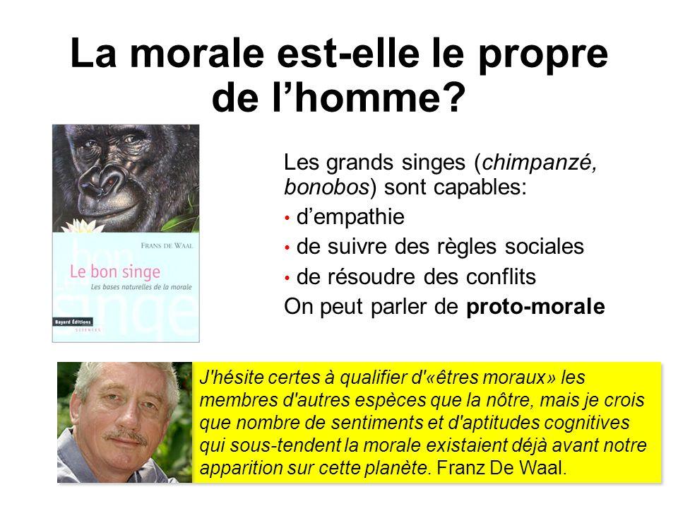 La morale est-elle le propre de lhomme? Les grands singes (chimpanzé, bonobos) sont capables: dempathie de suivre des règles sociales de résoudre des