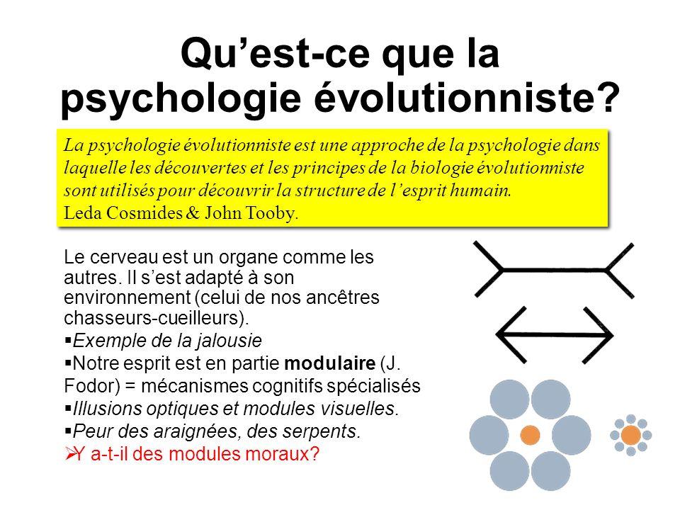 Quest-ce que la psychologie évolutionniste? Le cerveau est un organe comme les autres. Il sest adapté à son environnement (celui de nos ancêtres chass