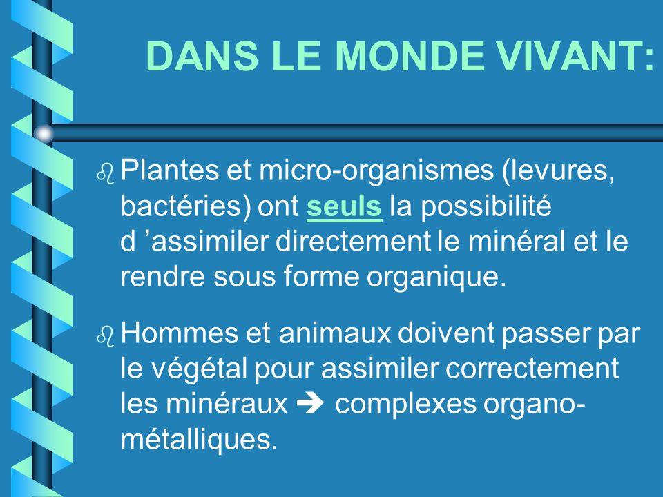 DANS LE MONDE VIVANT: b Plantes et micro-organismes (levures, bactéries) ont seuls la possibilité d assimiler directement le minéral et le rendre sous