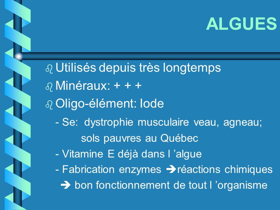 ALGUES b Utilisés depuis très longtemps b Minéraux: + + + b Oligo-élément: Iode - Se: dystrophie musculaire veau, agneau; sols pauvres au Québec - Vit