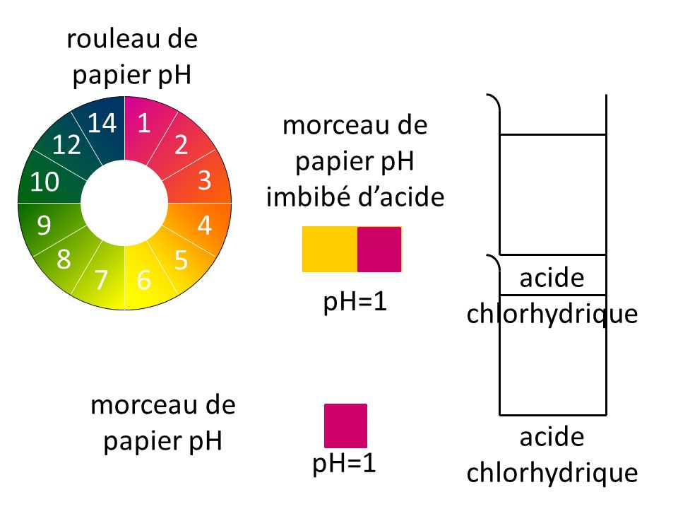rouleau de papier pH acide chlorhydrique morceau de papier pH pH=1 2 1 3 4 5 76 8 10 9 14 12 morceau de papier pH imbibé dacide acide chlorhydrique pH