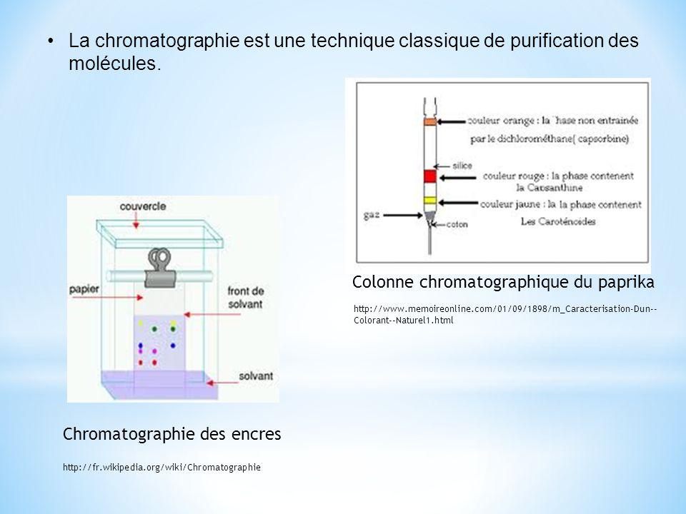 La chromatographie est une technique classique de purification des molécules. Colonne chromatographique du paprika Chromatographie des encres http://f