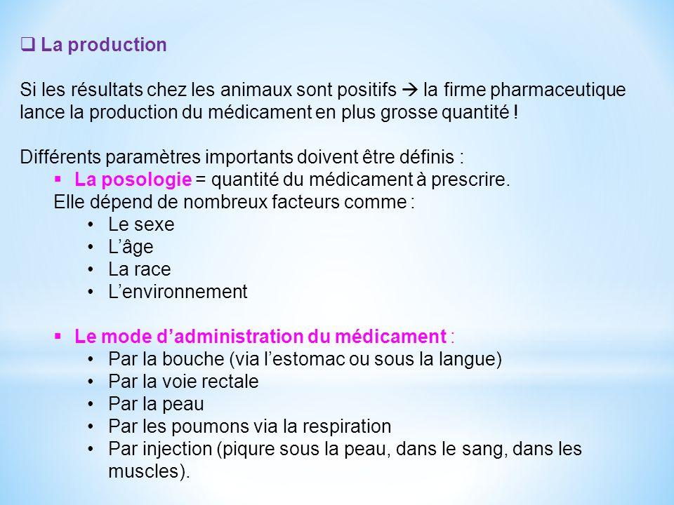 La production Si les résultats chez les animaux sont positifs la firme pharmaceutique lance la production du médicament en plus grosse quantité .