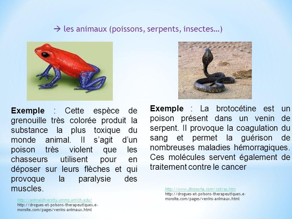les animaux (poissons, serpents, insectes…) Exemple : Cette espèce de grenouille très colorée produit la substance la plus toxique du monde animal.