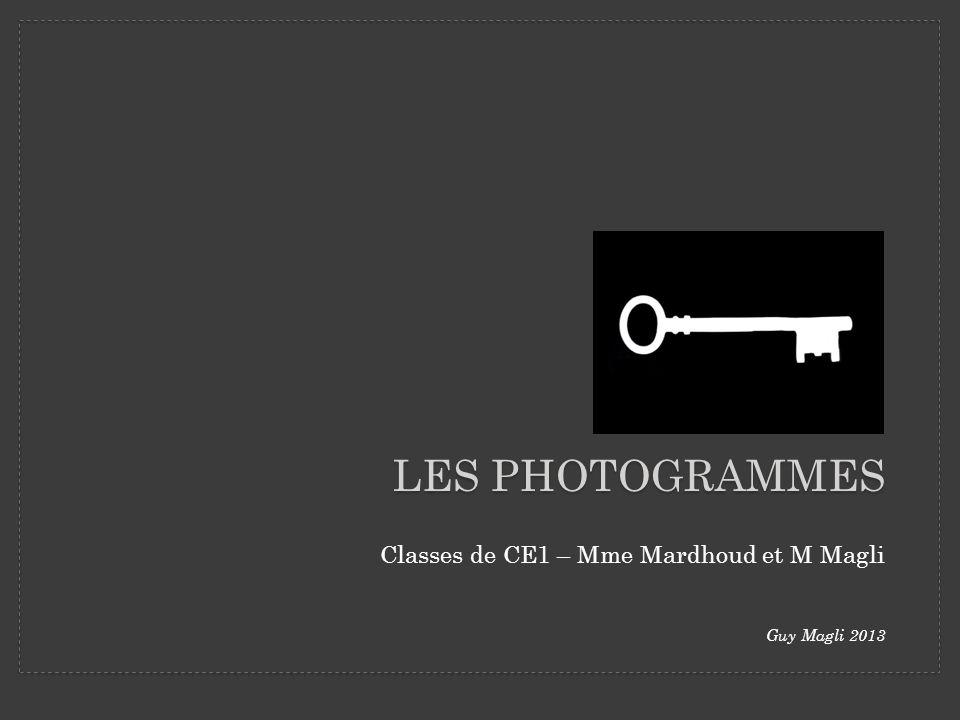 Classes de CE1 – Mme Mardhoud et M Magli Guy Magli 2013 LES PHOTOGRAMMES