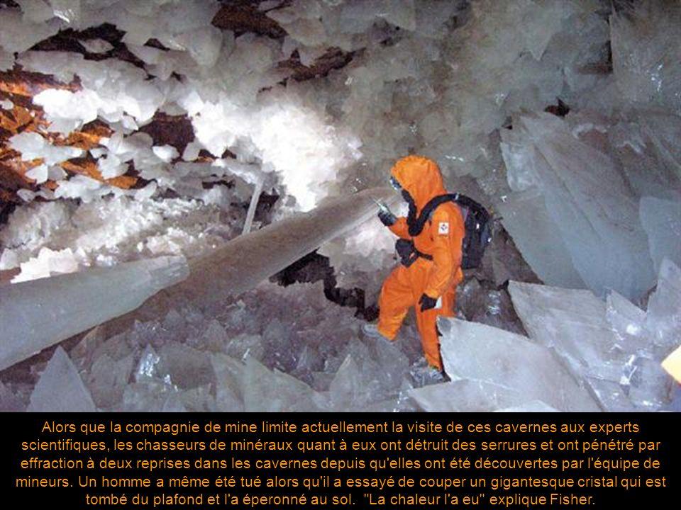 Les plus grands cristaux précédemment connus avaient été trouvés dans une caverne voisine faisant partie du même système de mine et baptisée « Caverne