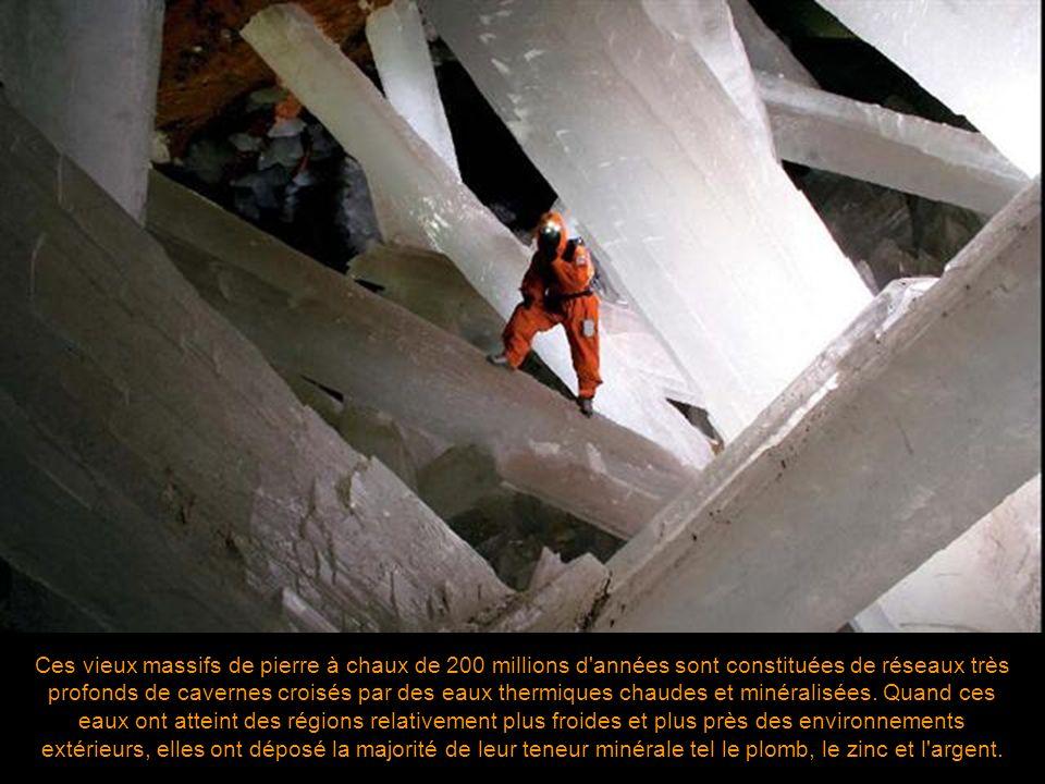 Soucieux de la possibilité de vandalisme, les fonctionnaires de la Penoles Company, propriétaire la mine, ont maintenu les découvertes secrètes. Très
