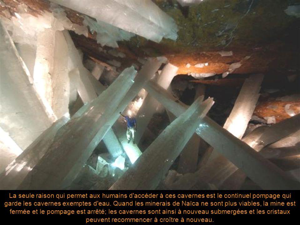 En plus des colonnes en cristal d'un diamètre de 1.5 mètre et de 15 mètres de longueur, la caverne contient des rangées superposées de formations en d