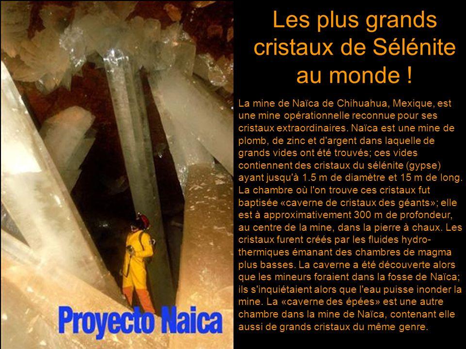 Les plus grands cristaux naturels sur terre ont été découverts à lintérieur de deux cavernes dans une mine d'argent et de zinc près de Naïca, à Chihua