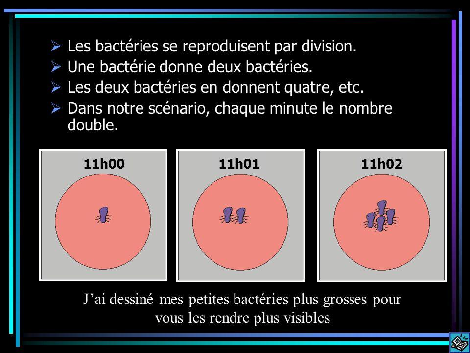 Les bactéries se reproduisent par division. Une bactérie donne deux bactéries. Les deux bactéries en donnent quatre, etc. Dans notre scénario, chaque