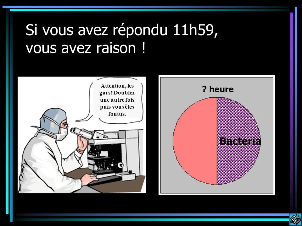 Si vous avez répondu 11h59, vous avez raison ! Bacteria vb ? heure Attention, les gars! Doublez une autre fois puis vous êtes foutus.
