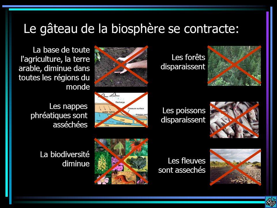 Le gâteau de la biosphère se contracte: La base de toute l'agriculture, la terre arable, diminue dans toutes les régions du monde Les nappes phréatiqu