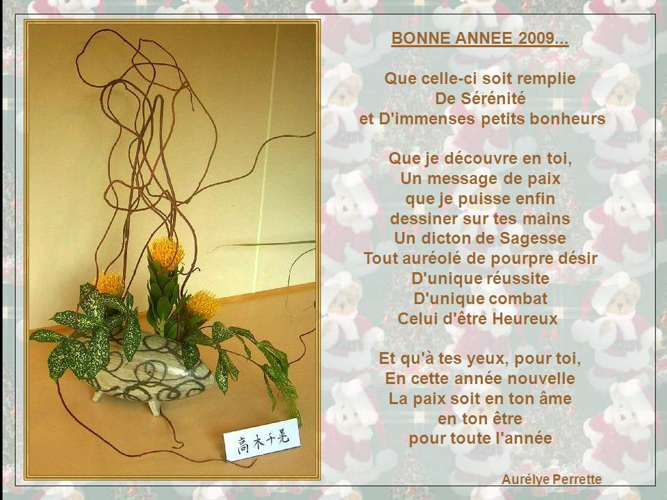 BONNE ANNEE 2009...