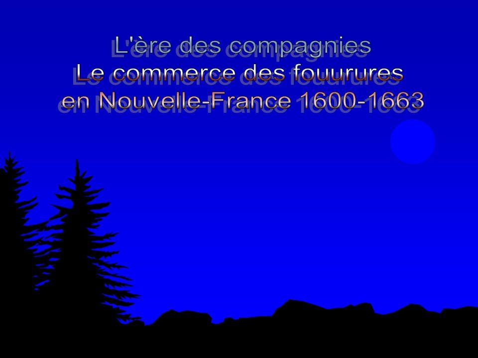 Conséquences du commerce des fourrures en Nouvelle-France.