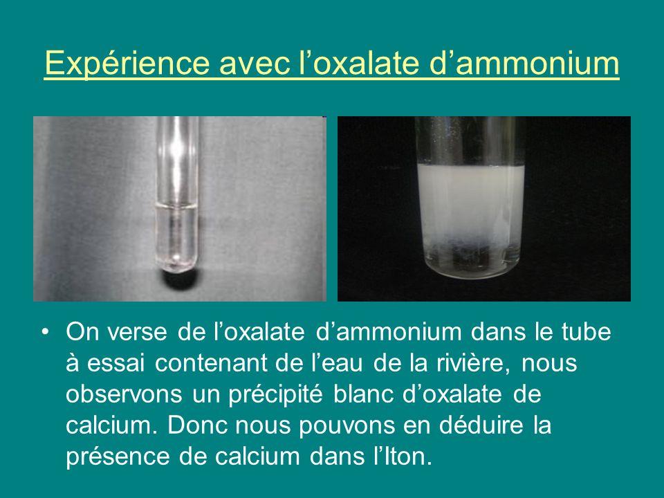 Expérience avec loxalate dammonium On verse de loxalate dammonium dans le tube à essai contenant de leau de la rivière, nous observons un précipité blanc doxalate de calcium.