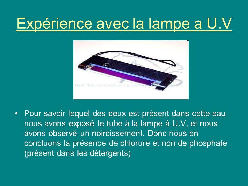 Expérience avec la lampe a U.V Pour savoir lequel des deux est présent dans cette eau nous avons exposé le tube à la lampe à U.V, et nous avons observ