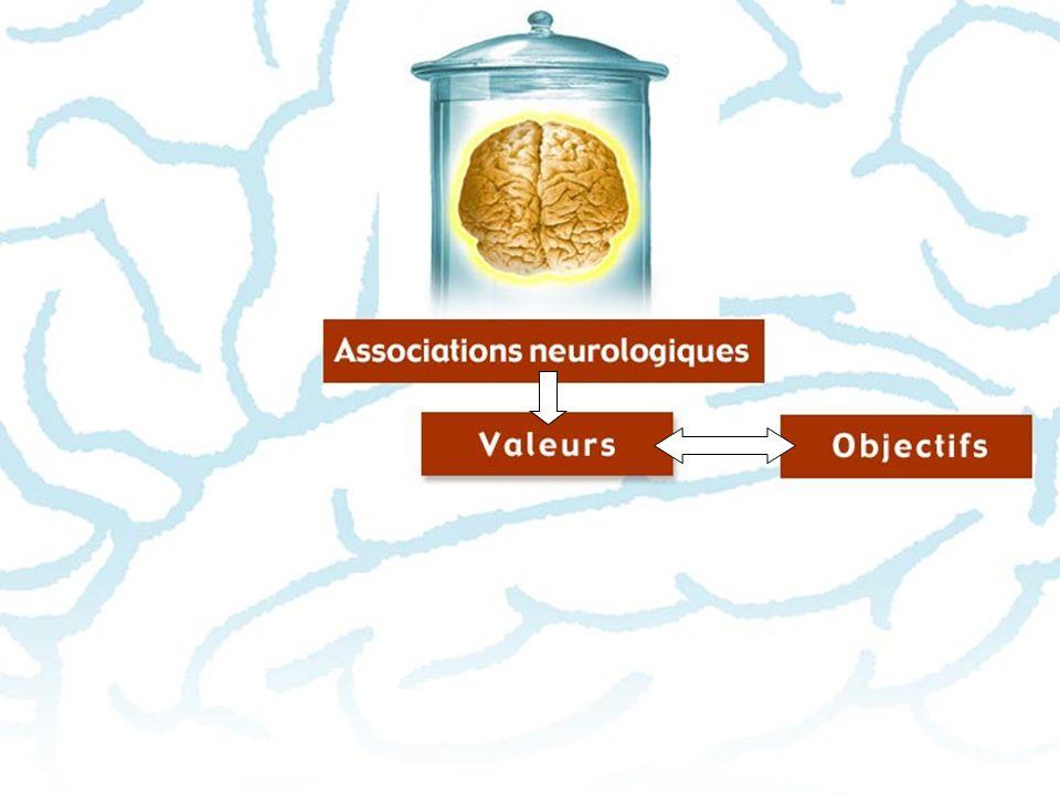 VALEURS Une des forces qui agissent sur votre cerveau : votre système de VALEURS > Lorsqu on connaît les valeurs dune personne, on peut aisément comprendre sa « logique » et prédire ses choix.