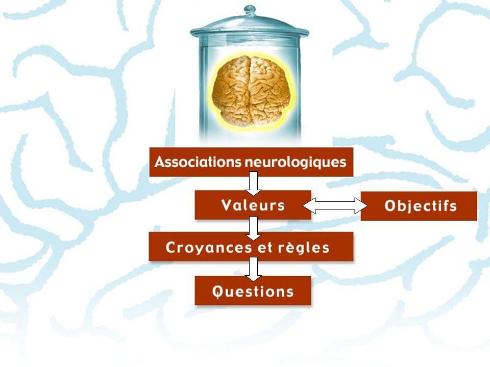 Associations neurologiques > Associations verbales > Associations physiques > Associations olfactives, gustatives, kinesthésiques et visuelles > Associations émotives