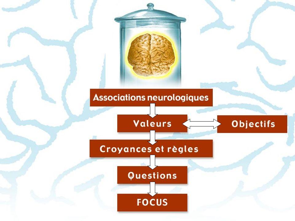 Associations neurologiques > Par la répétion > Par des émotions intenses > Par choix Comment se créent les associations neurologiques ?