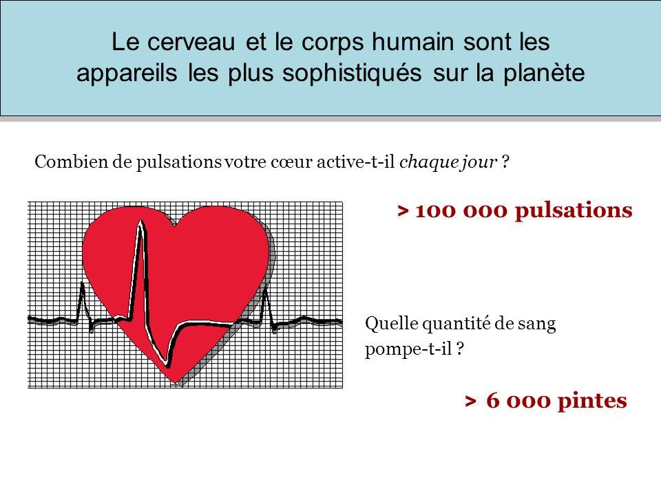 > 2 fois le tour de la terre, soit un réseau de 60 000 milles dans lequel votre cœur fait constamment circuler votre sang.