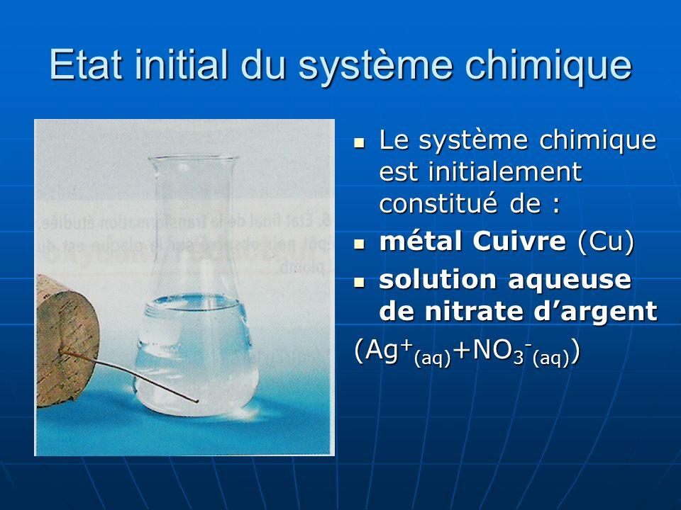 Etat initial du système chimique Le système chimique est initialement constitué de : Le système chimique est initialement constitué de : métal Cuivre