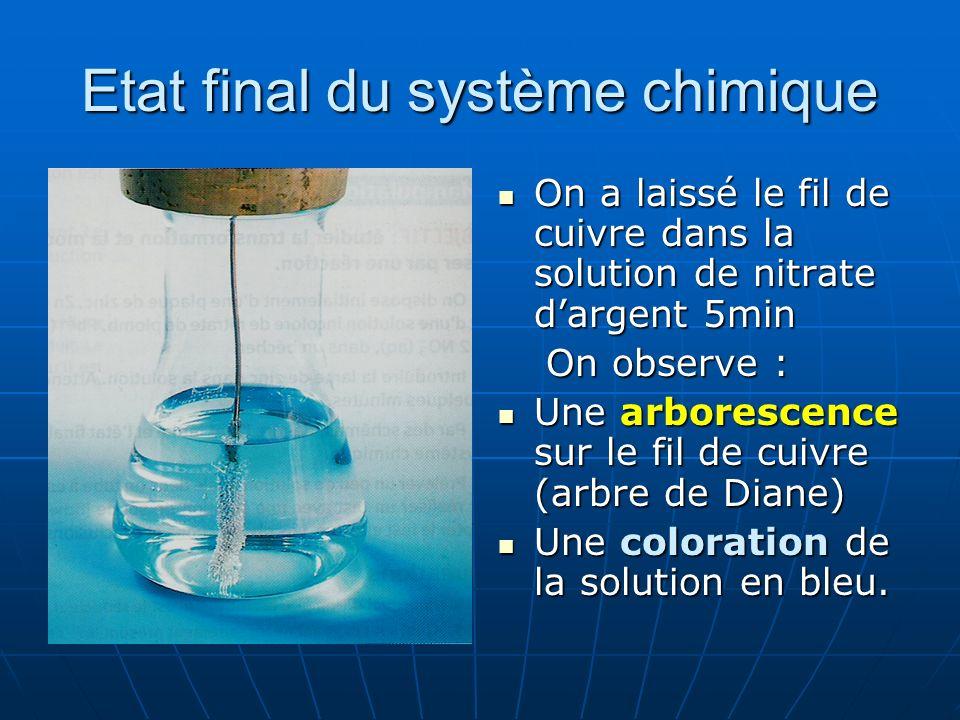 Etat final du système chimique On a laissé le fil de cuivre dans la solution de nitrate dargent 5min On a laissé le fil de cuivre dans la solution de