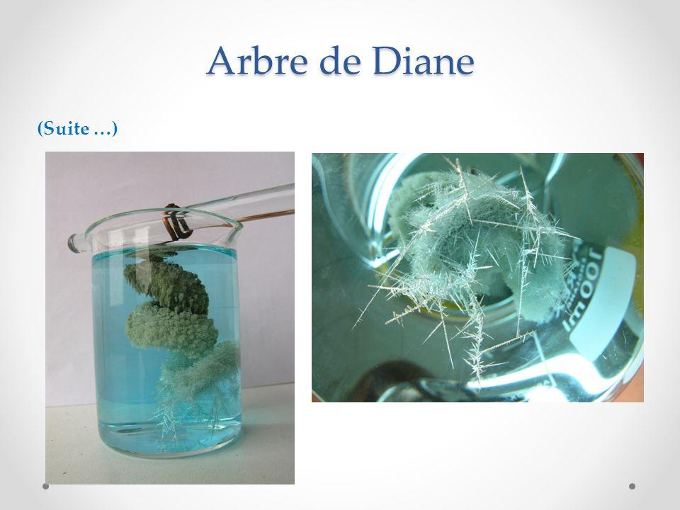 Arbre de Diane (Suite …)